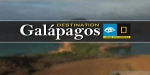 Darwin's Galapagos with Lindblad Expeditions and National Geographic