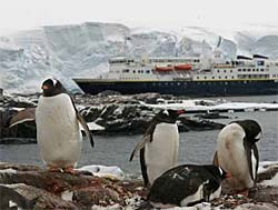 National Geographic Explorer in Antarctica