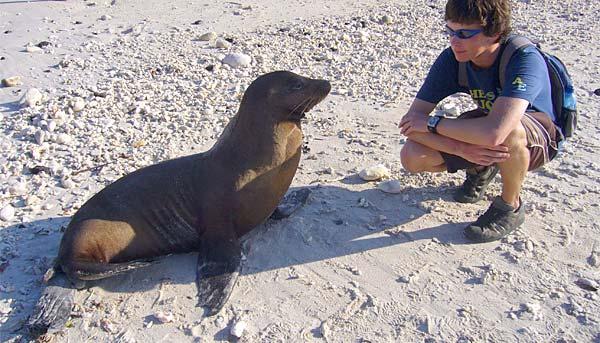 A Typical Galapagos Encounter